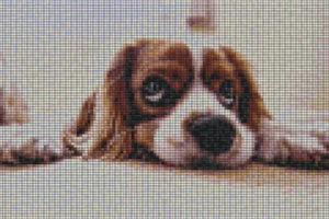 Mosaic Tile design - Mosaic Creator