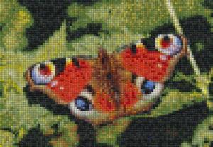 Mosaic Tile Design butterfly - Mosaic Creator