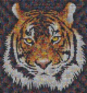 Mosaic Tile Design tiger - Mosaic Creator