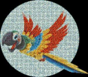 Mosaic Tile Design parrot - Mosaic Creator