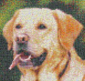 Dog tile mosaic design - Mosaic Creator